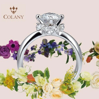 COLANY / コラニー